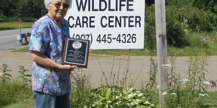 "Carleen Cote holds the ""Spirit of America Award"" presented to the Duck Pond Wildlife Care Center in 2015. (Submitted photo)"