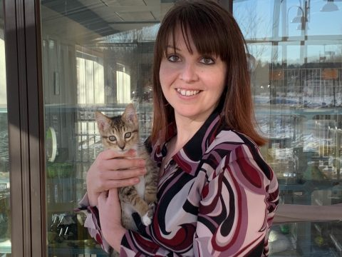 Katie Lisnik with Dasher, a kitten at the shelter on Strawberry Avenue in Lewiston. (Submitted photo)