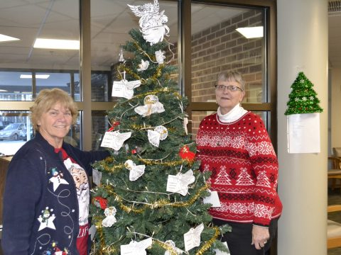 The Franklin Memorial Hospital remembrance tree benefits the hospital auxiliary. From left, auxiliary members Vickie Robbins and Shannon Smith. (Submitted photo)
