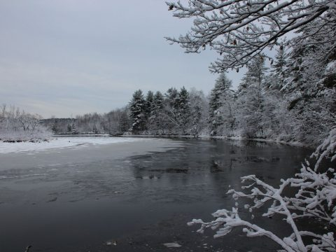 Eastern River Preserve (Andrew Tufts photo)