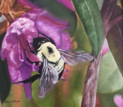 Maine pollinators events scheduled for the coming weeks